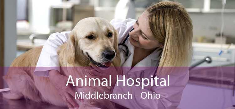 Animal Hospital Middlebranch - Ohio