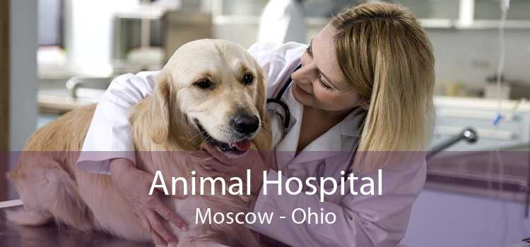 Animal Hospital Moscow - Ohio