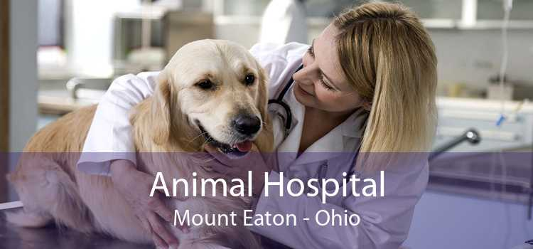 Animal Hospital Mount Eaton - Ohio