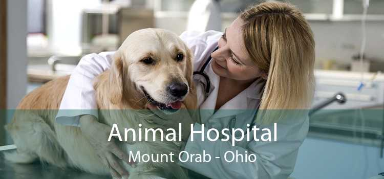 Animal Hospital Mount Orab - Ohio