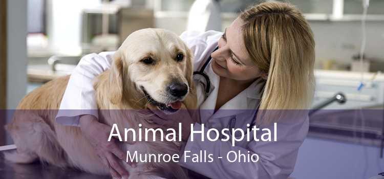 Animal Hospital Munroe Falls - Ohio