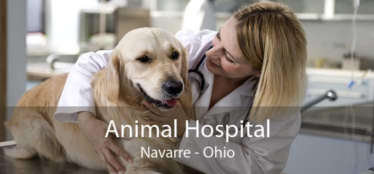 Animal Hospital Navarre - Ohio