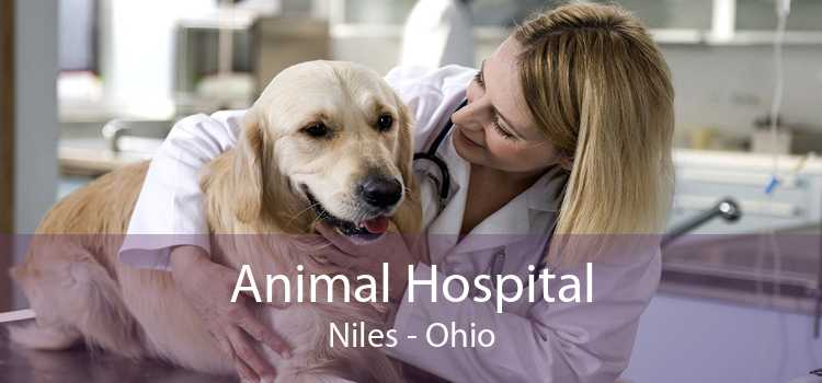 Animal Hospital Niles - Ohio