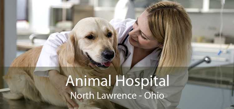 Animal Hospital North Lawrence - Ohio