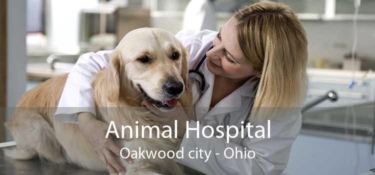 Animal Hospital Oakwood city - Ohio