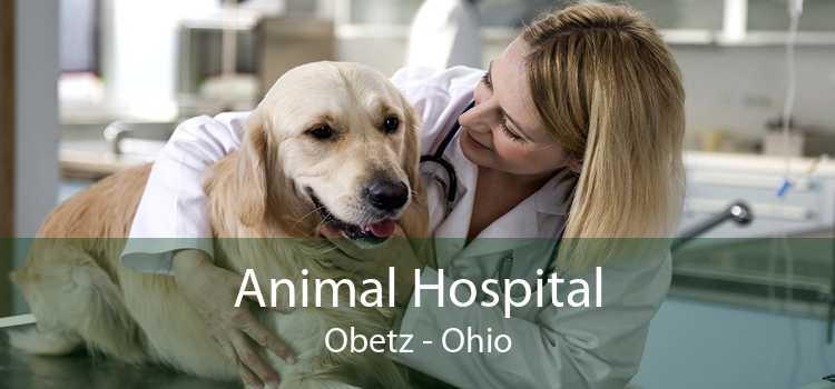 Animal Hospital Obetz - Ohio