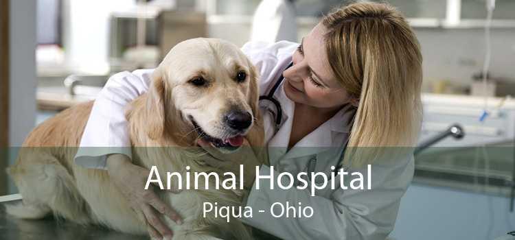 Animal Hospital Piqua - Ohio