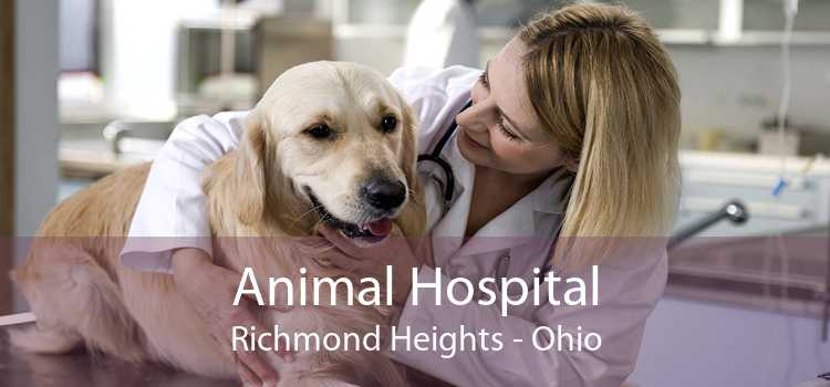Animal Hospital Richmond Heights - Ohio