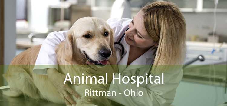 Animal Hospital Rittman - Ohio