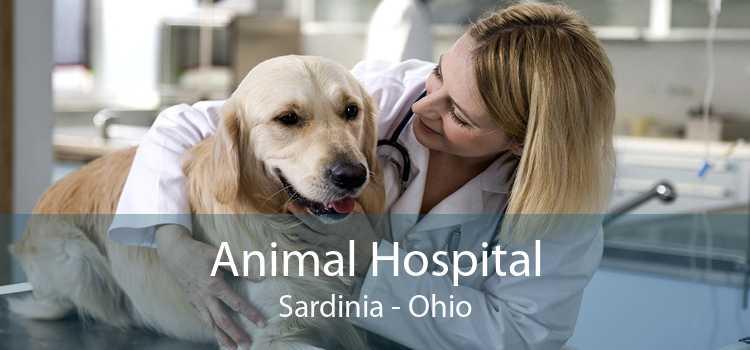 Animal Hospital Sardinia - Ohio