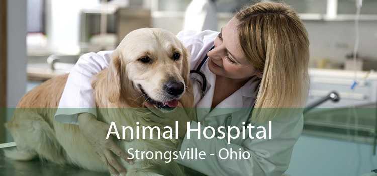 Animal Hospital Strongsville - Ohio