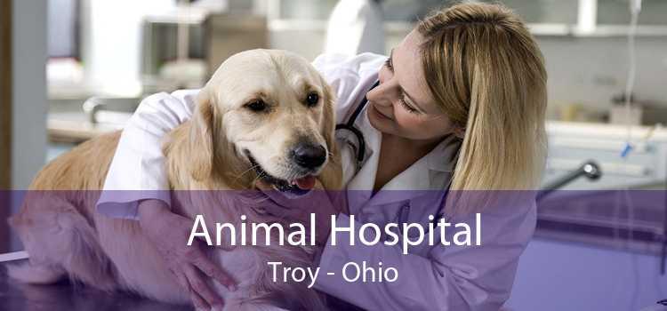Animal Hospital Troy - Ohio