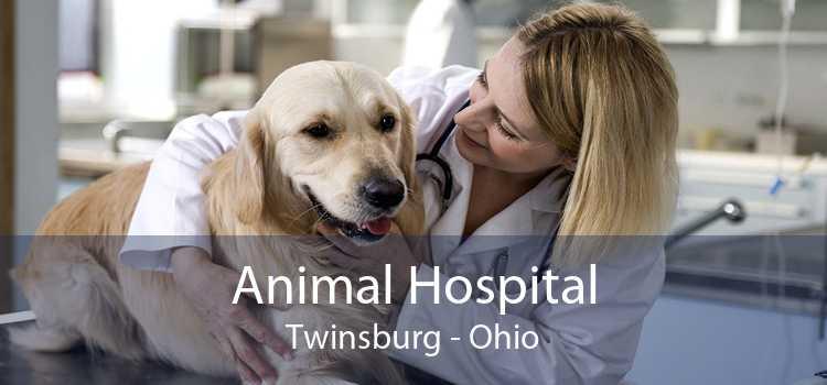 Animal Hospital Twinsburg - Ohio