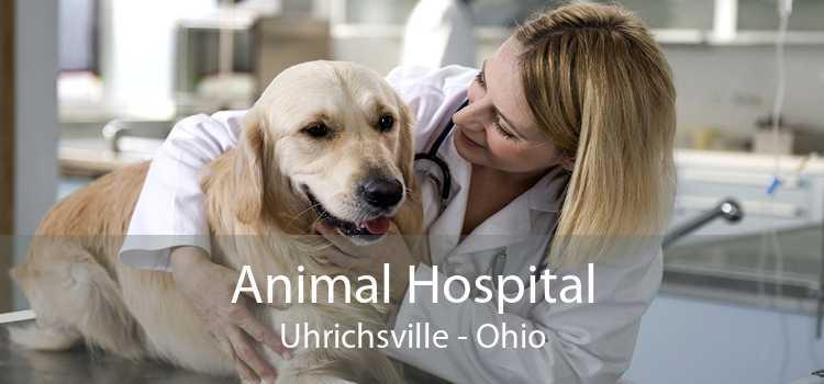 Animal Hospital Uhrichsville - Ohio