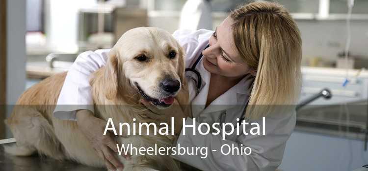Animal Hospital Wheelersburg - Ohio
