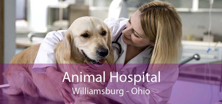 Animal Hospital Williamsburg - Ohio