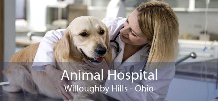 Animal Hospital Willoughby Hills - Ohio