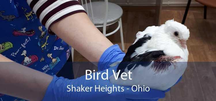 Bird Vet Shaker Heights - Ohio