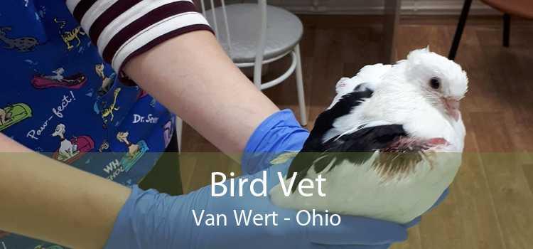 Bird Vet Van Wert - Ohio