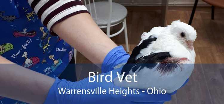 Bird Vet Warrensville Heights - Ohio