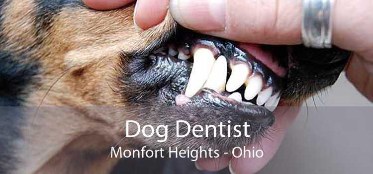 Dog Dentist Monfort Heights - Ohio