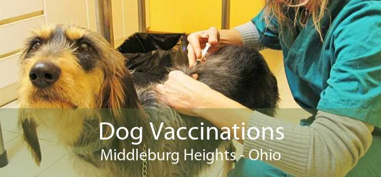 Dog Vaccinations Middleburg Heights - Ohio