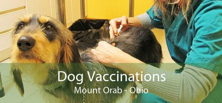 Dog Vaccinations Mount Orab - Ohio