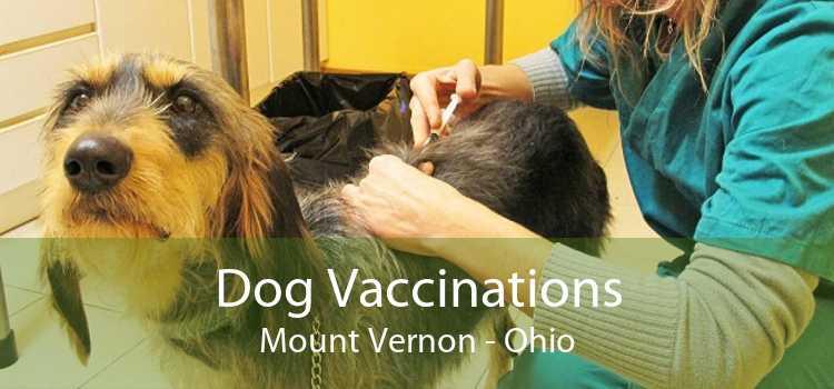 Dog Vaccinations Mount Vernon - Ohio