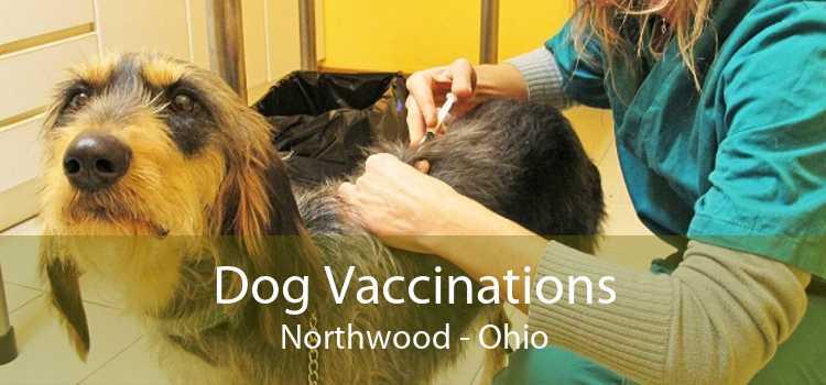 Dog Vaccinations Northwood - Ohio