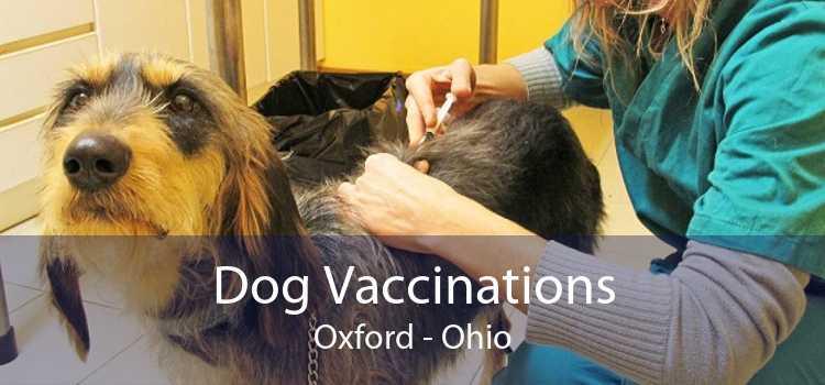 Dog Vaccinations Oxford - Ohio