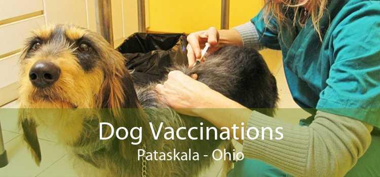 Dog Vaccinations Pataskala - Ohio