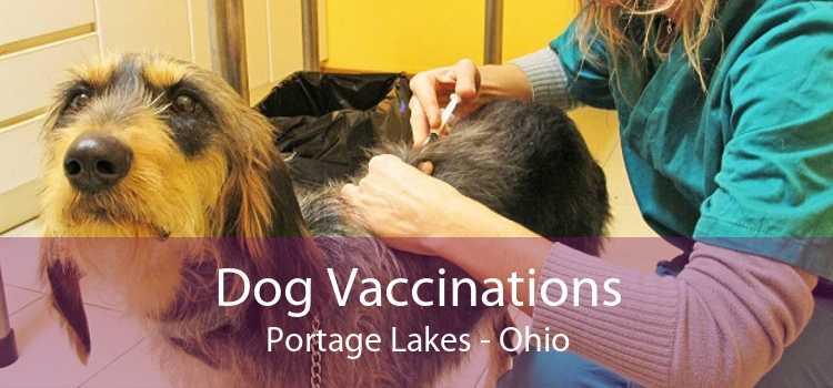 Dog Vaccinations Portage Lakes - Ohio