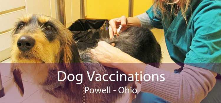 Dog Vaccinations Powell - Ohio