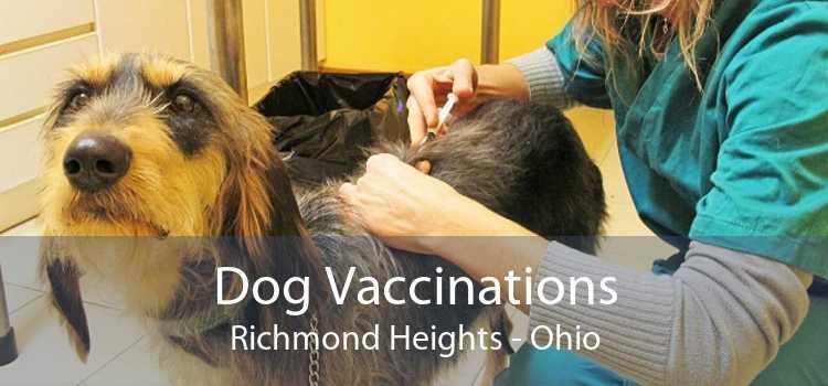 Dog Vaccinations Richmond Heights - Ohio
