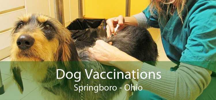 Dog Vaccinations Springboro - Ohio