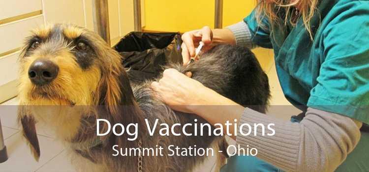 Dog Vaccinations Summit Station - Ohio