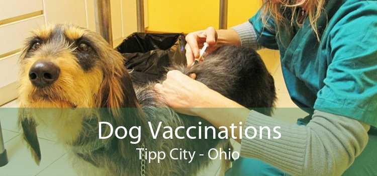 Dog Vaccinations Tipp City - Ohio