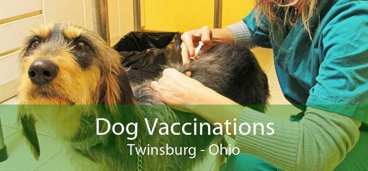 Dog Vaccinations Twinsburg - Ohio