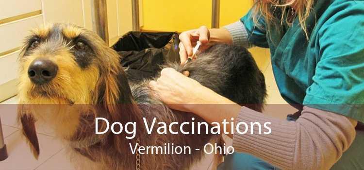 Dog Vaccinations Vermilion - Ohio