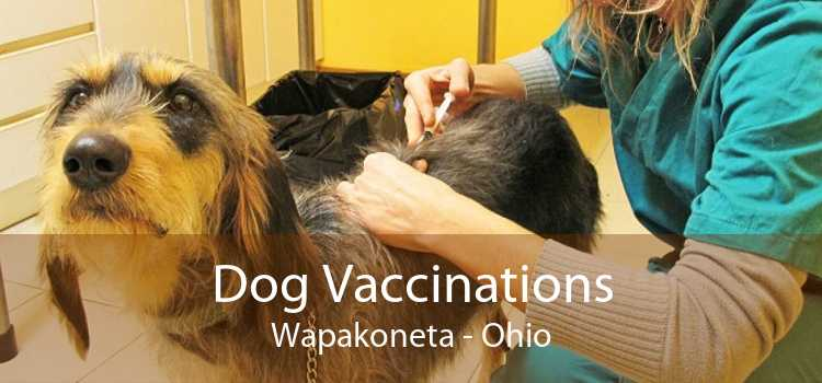 Dog Vaccinations Wapakoneta - Ohio