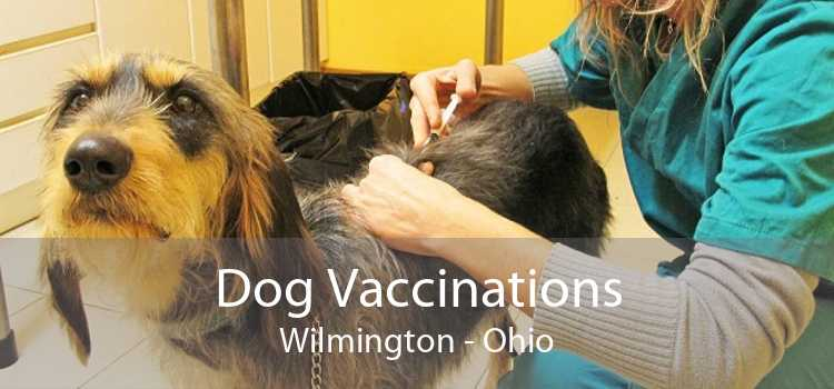 Dog Vaccinations Wilmington - Ohio