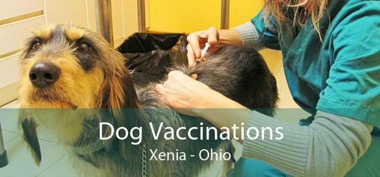 Dog Vaccinations Xenia - Ohio