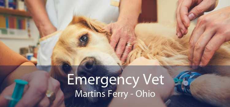 Emergency Vet Martins Ferry - Ohio