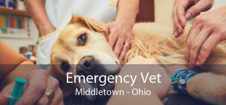 Emergency Vet Middletown - Ohio