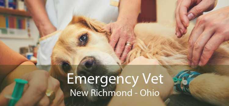 Emergency Vet New Richmond - Ohio