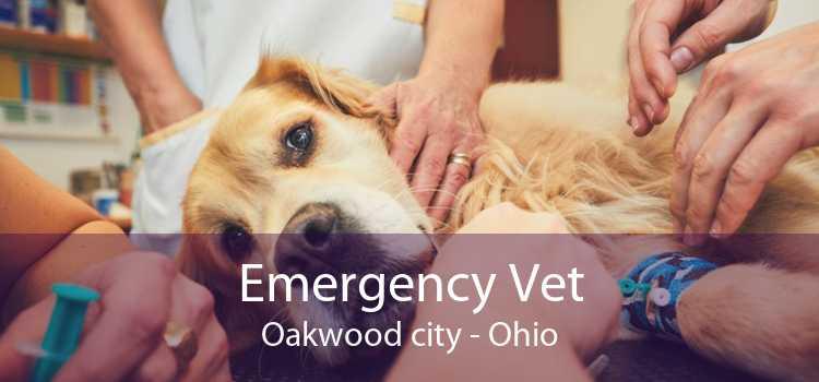 Emergency Vet Oakwood city - Ohio