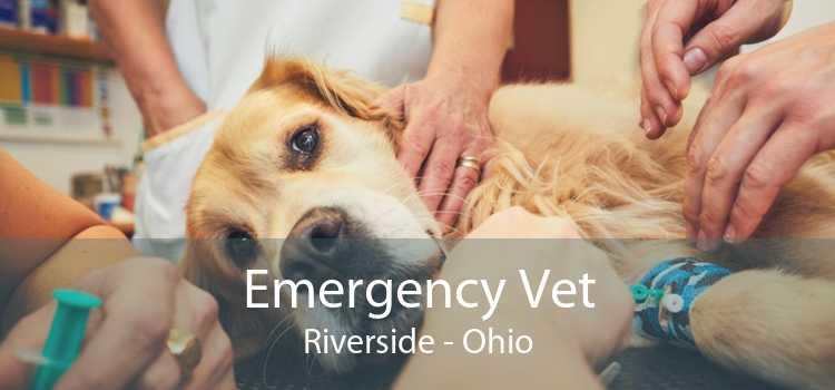 Emergency Vet Riverside - Ohio