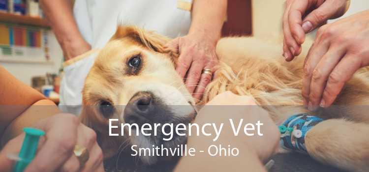 Emergency Vet Smithville - Ohio
