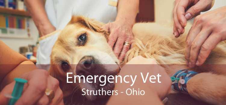 Emergency Vet Struthers - Ohio