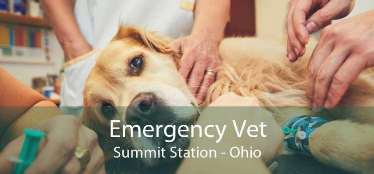 Emergency Vet Summit Station - Ohio